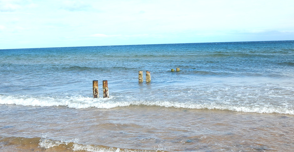 Brora, Beach, Sea, Dolphins, Glengarry, B&B, Kingussie, Highlandss